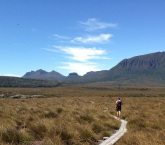 Cradle Mountain Run 2017